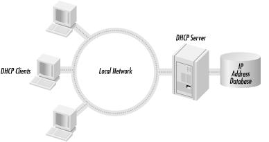 The DHCP client/server model