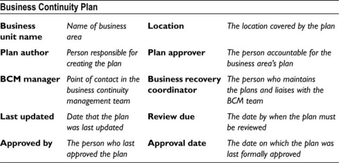 APPENDIX H Basic Business Continuity Plan Template Disaster - Business continuity and disaster recovery plan template