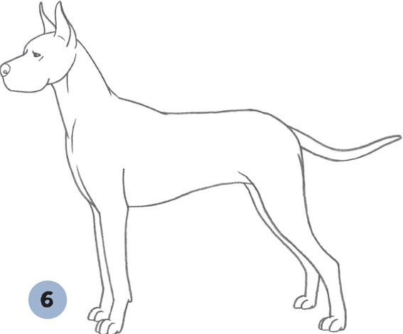 Great Dane Dogs Puppies Book
