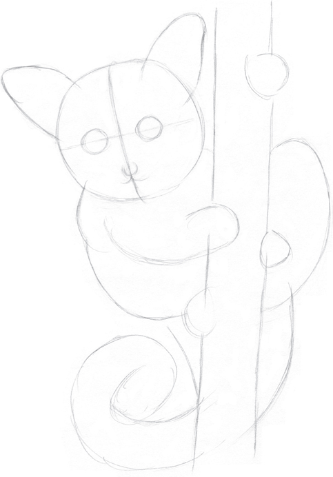 Step one using an hb pencil i lightly draw a circle for the head then i add the body limbs and tail making the body wrap around a tree