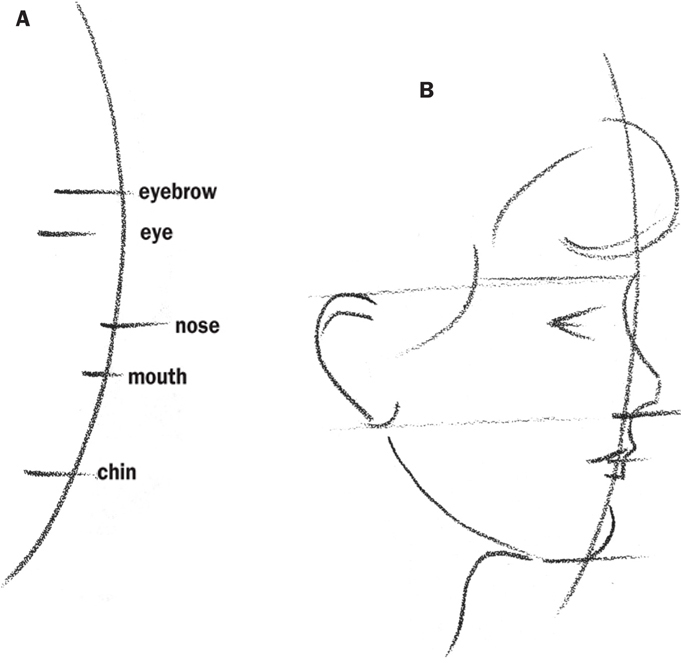 Line Drawing Of Face Profile : Children—profile drawing faces book