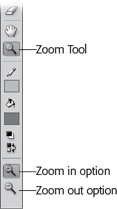 On the Tools panel, when you click each tool, the Options section shows you buttons that let you modify that particular tool. In the Tools panel's View section, for example, when you click the Zoom tool, the Options section changes to show you only zooming options: Enlarge (with the + sign) and Reduce (with the – sign).