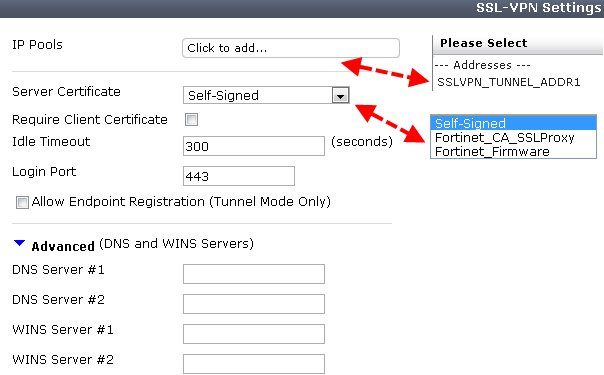 Configuring the SSL VPN portal - Getting Started with