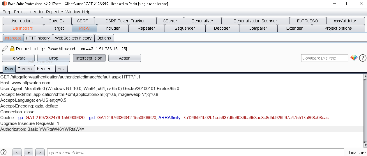 Brute forcing it with Burp Suite - Hands-On Application Penetration