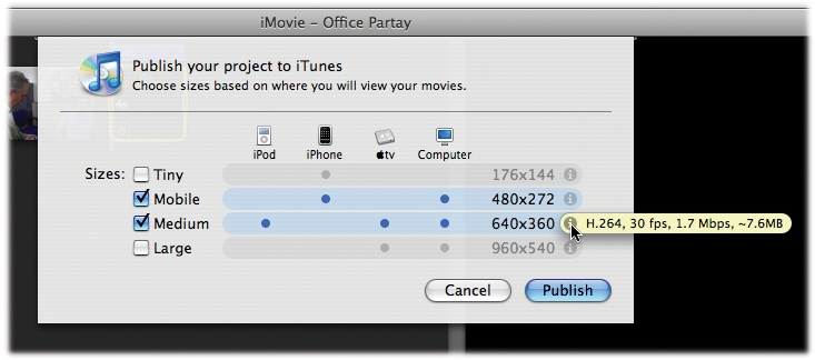 This unusual-looking dialog box is just Apple's way of offering you some ready-made compression settings for typical playback gadgets. Point to the button to see some techier details.