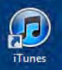 Your iTunes User Guide