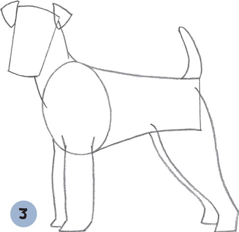 how to draw dogs book