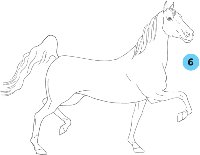 Learn to Draw Horses & Ponies - Horses & Ponies [Book]