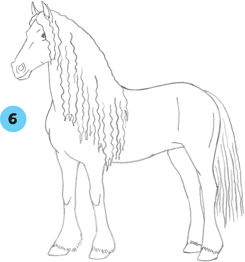 Learn to Draw Horses - Living Legends