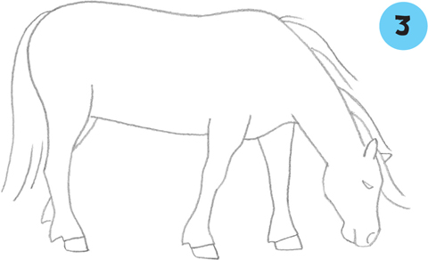 learn to draw horses ponies - journalistesdebout.com