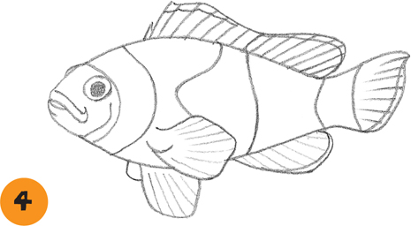 Clownfish - Learn to draw: Sea Creatures [Book]
