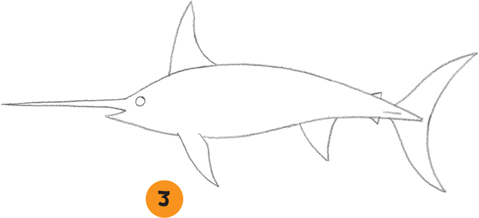 how to draw sea fish