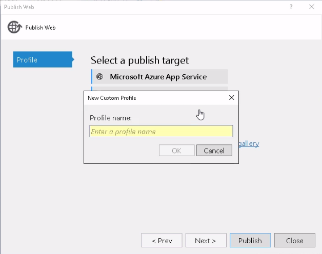 Publishing with Visual Studio - Learning Angular for  NET
