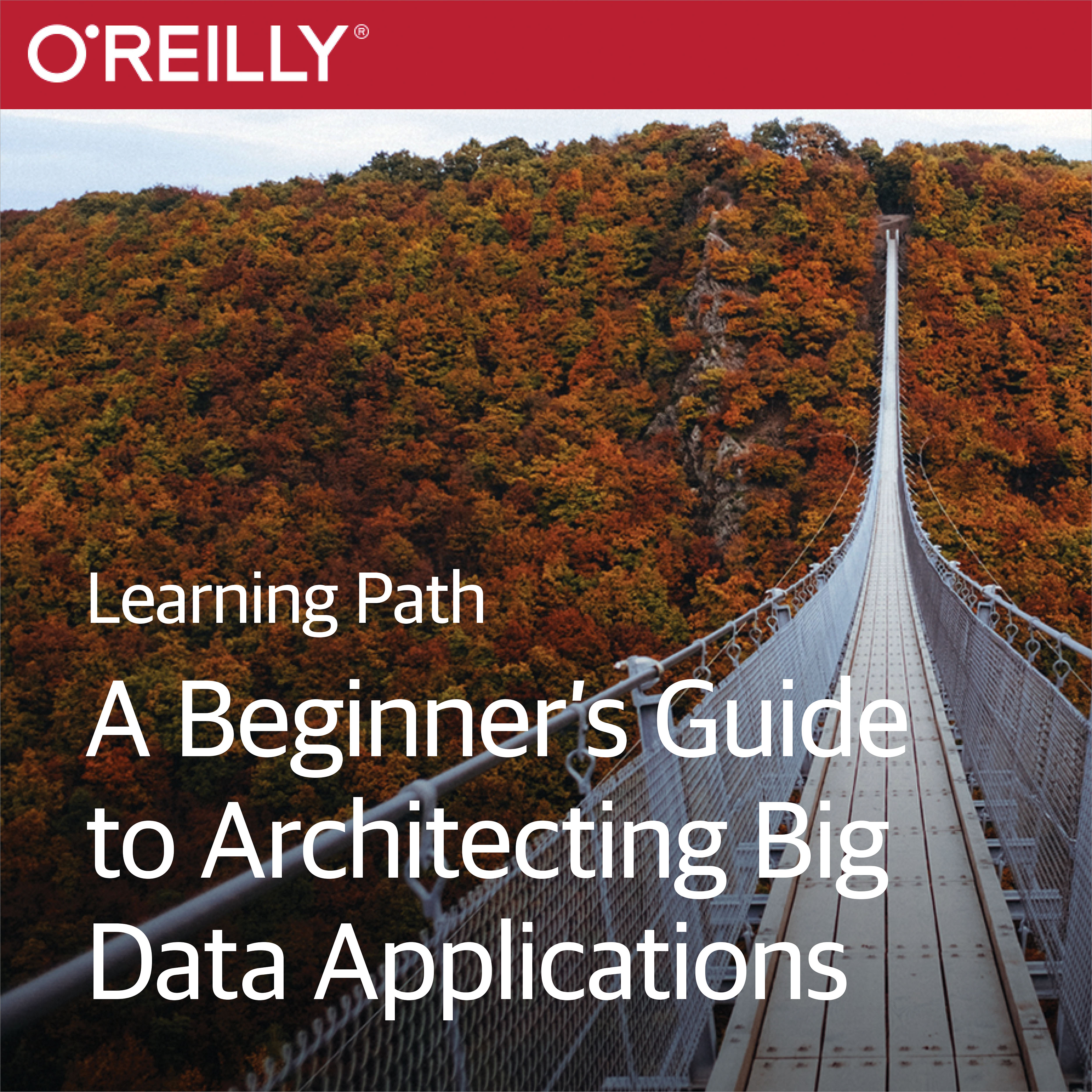cover for Learning Path: A Beginner's Guide to Architecting Big Data Applications