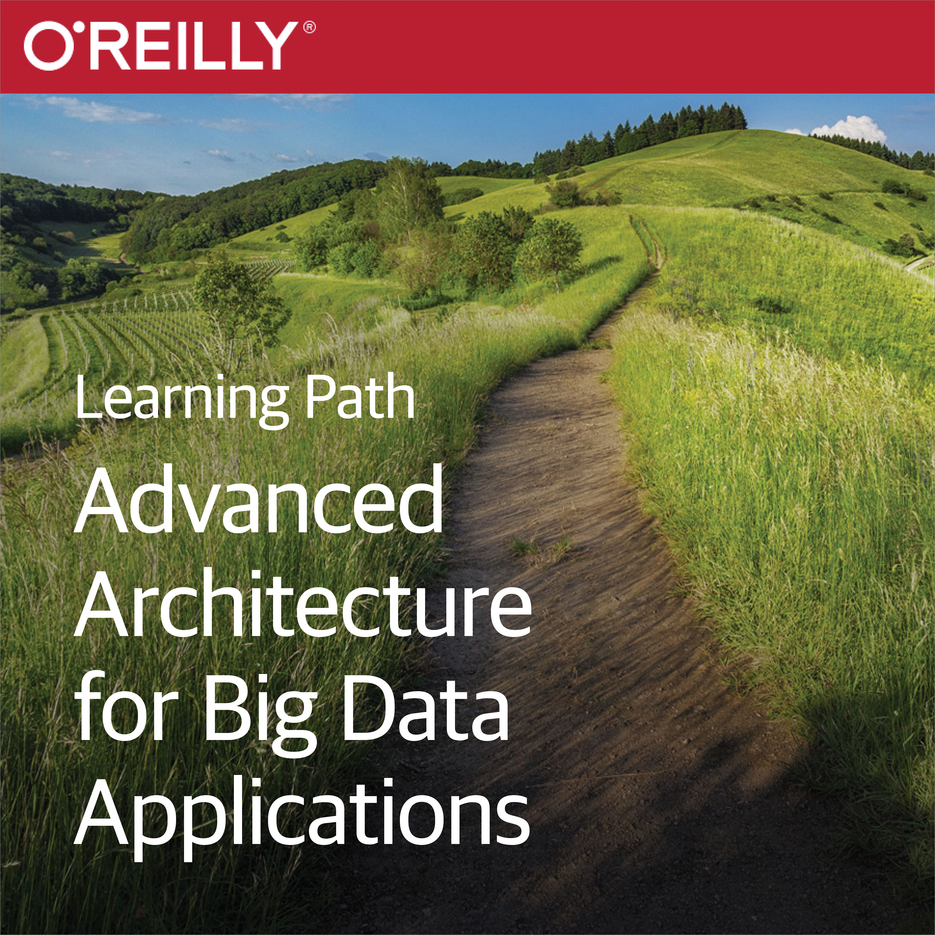 cover for Learning Path: Advanced Architecture for Big Data Applications