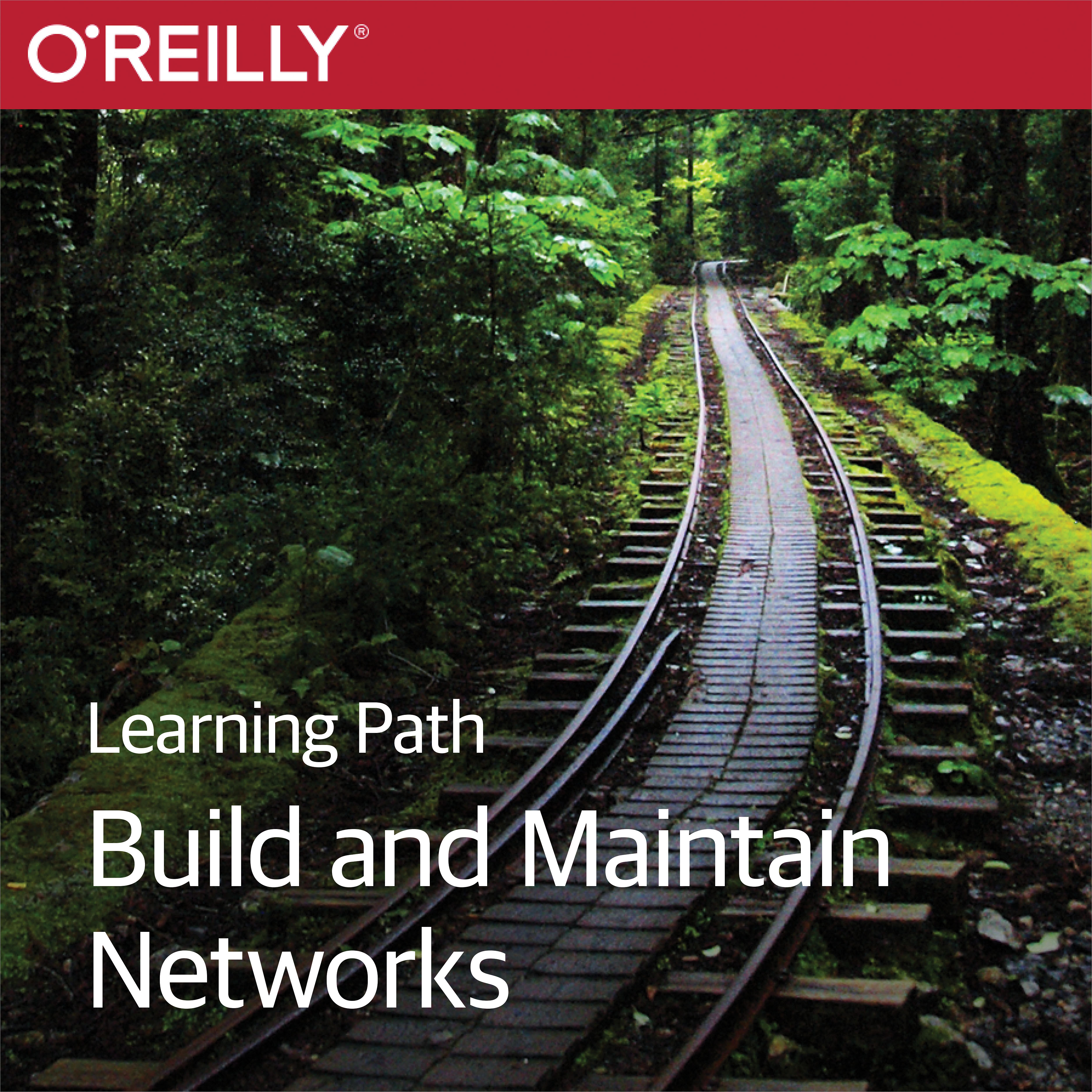 cover for Learning Path: Build and Maintain Networks