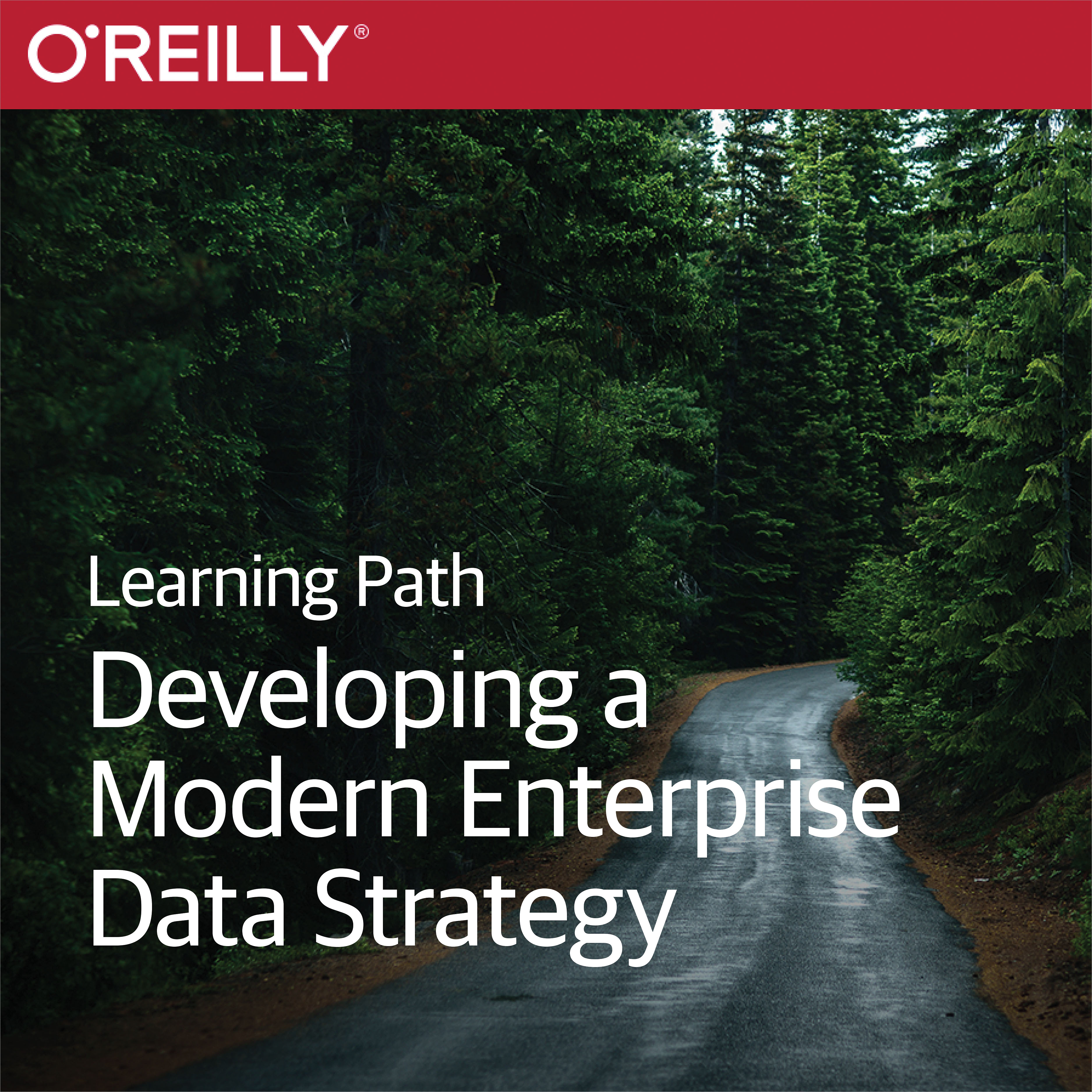 cover for Learning Path: Developing a Modern Enterprise Data Strategy
