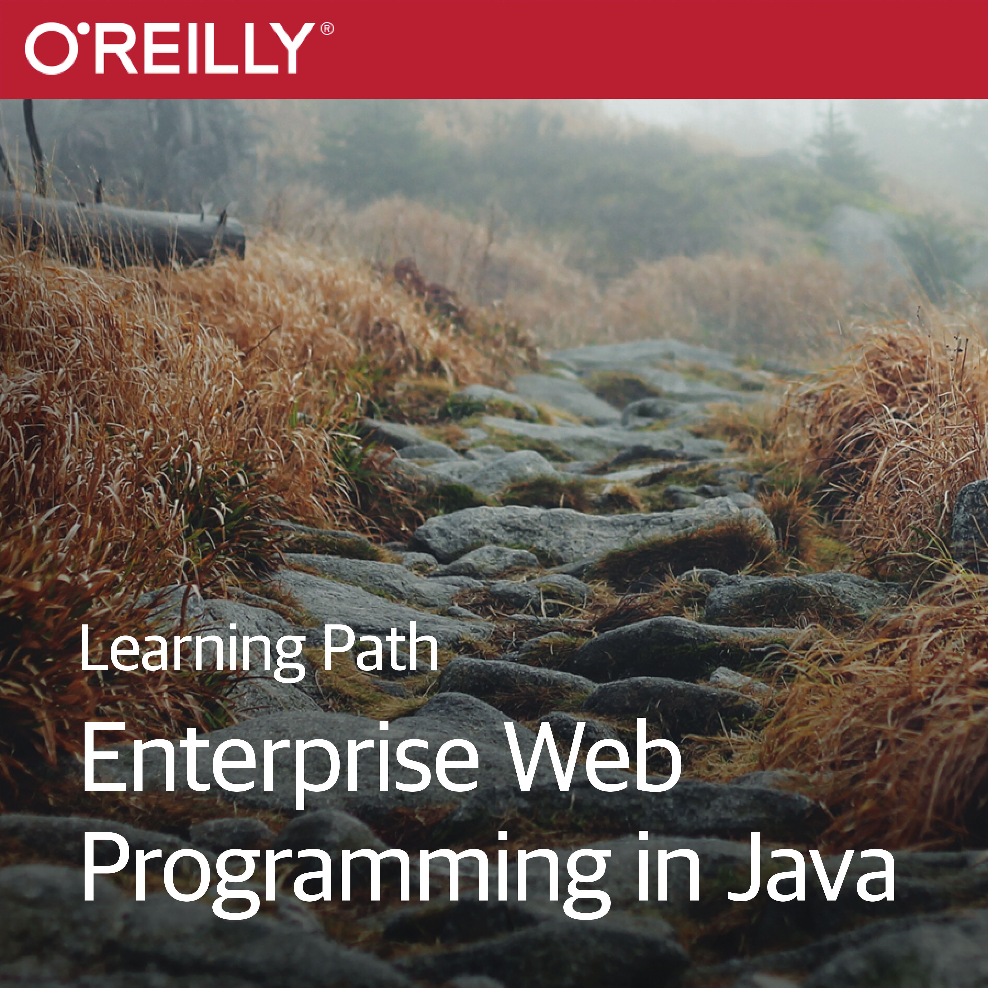 cover for Learning Path: Enterprise Web Programming with Java