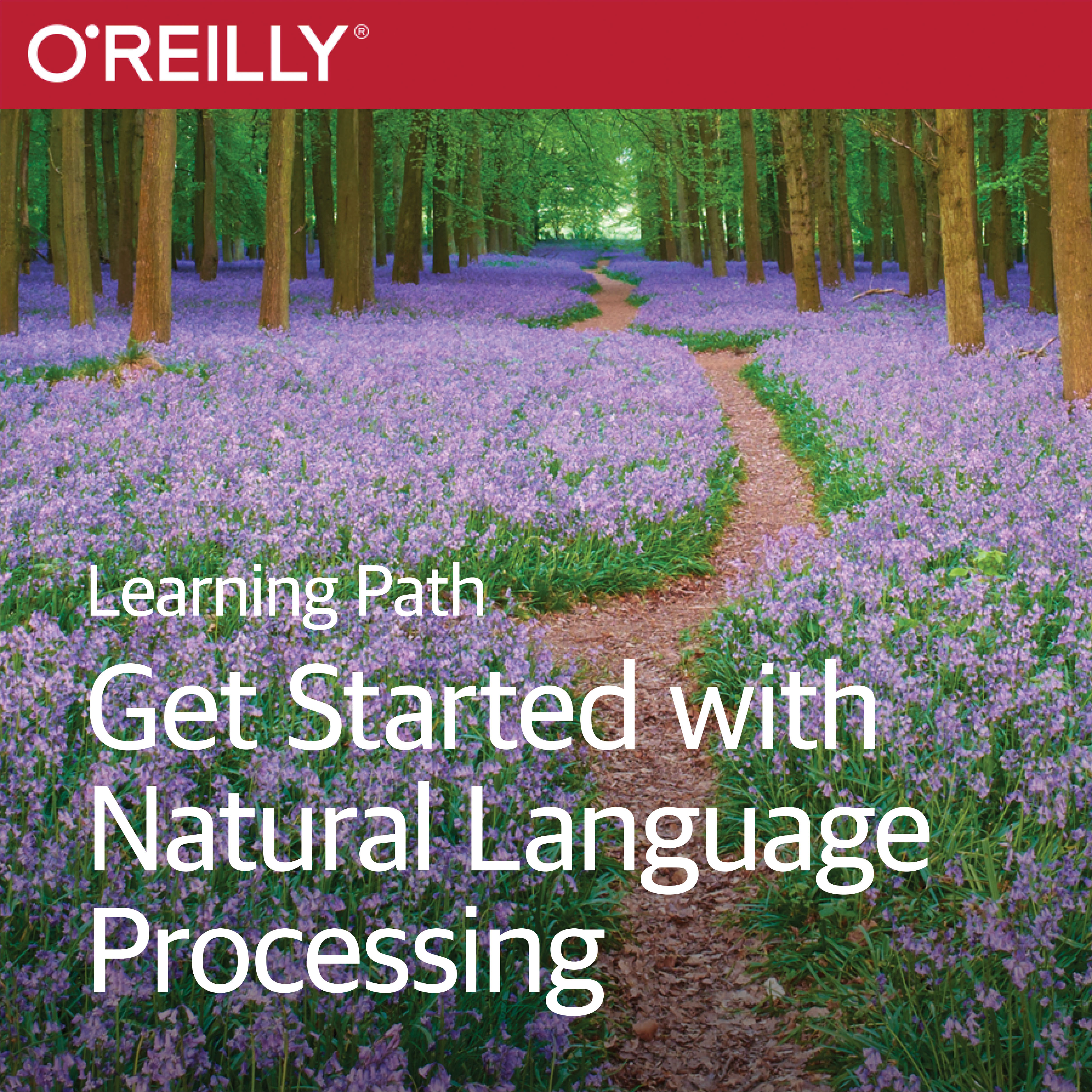 cover for Learning Path: Get Started with Natural Language Processing Using Python, Spark, and Scala