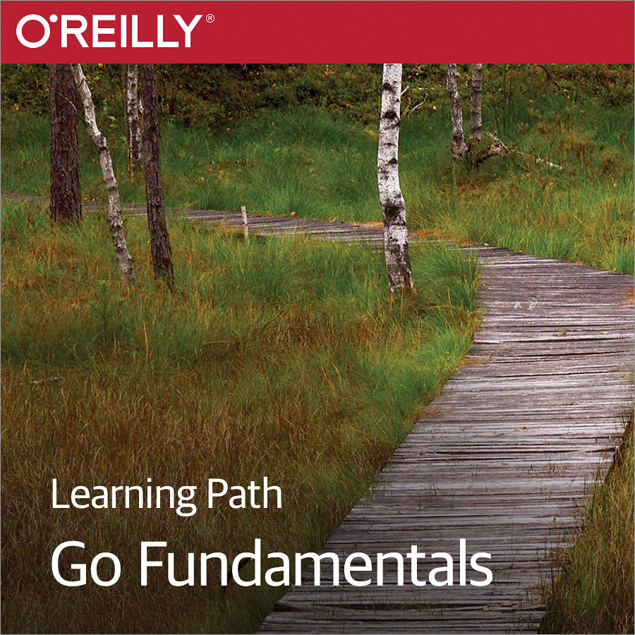 cover for Learning Path: Go Fundamentals
