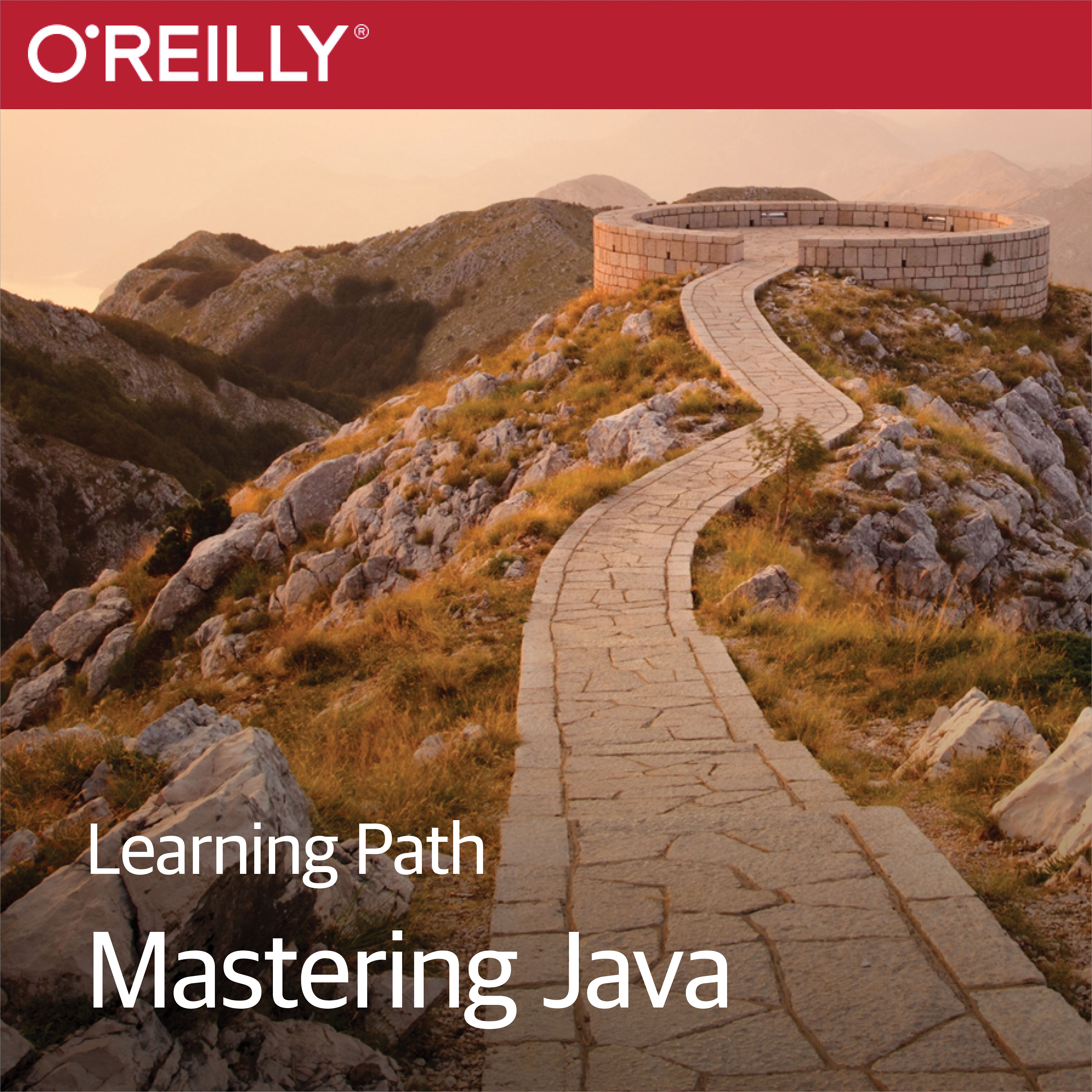 cover for Learning Path: Mastering Java