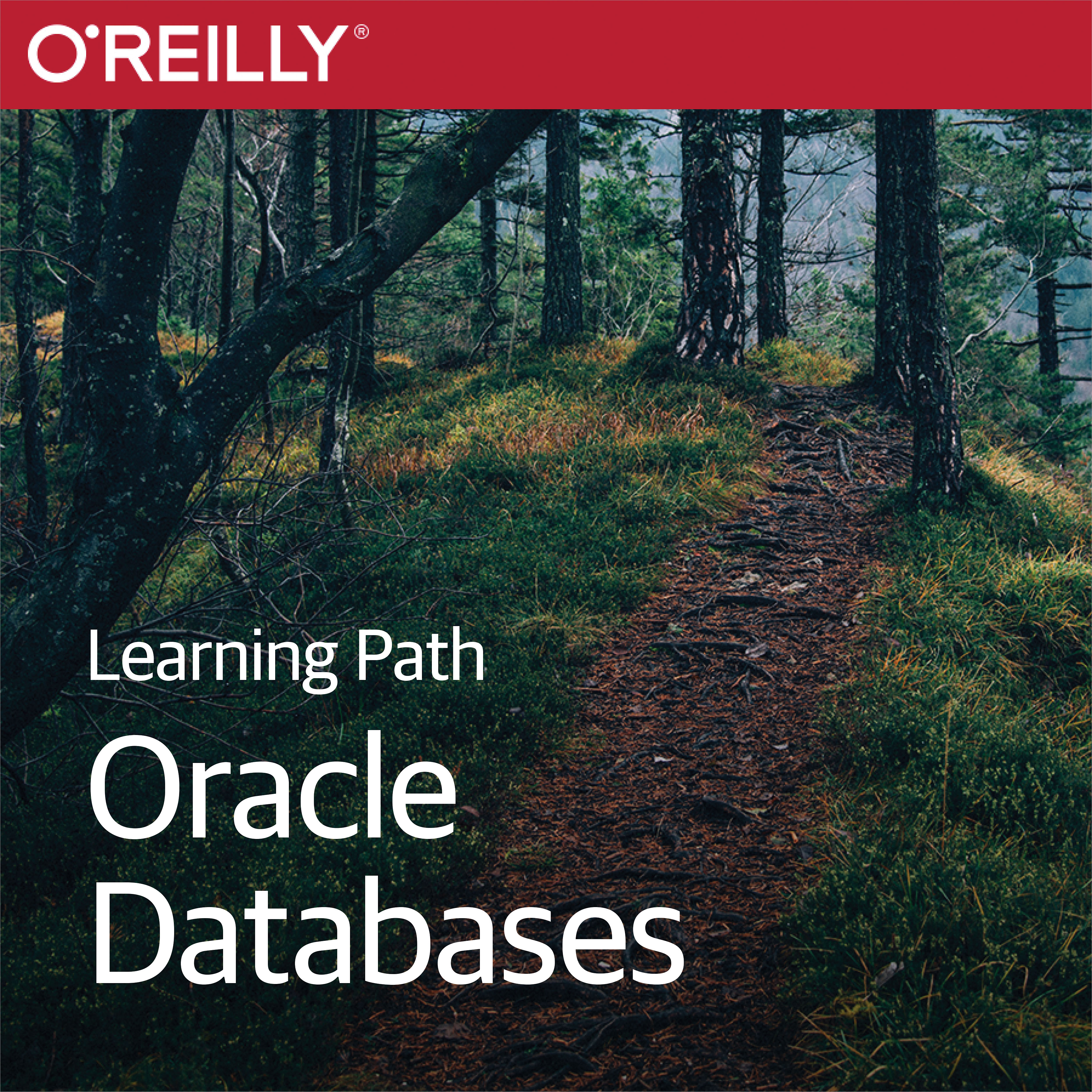 cover for Learning Path: Oracle Databases