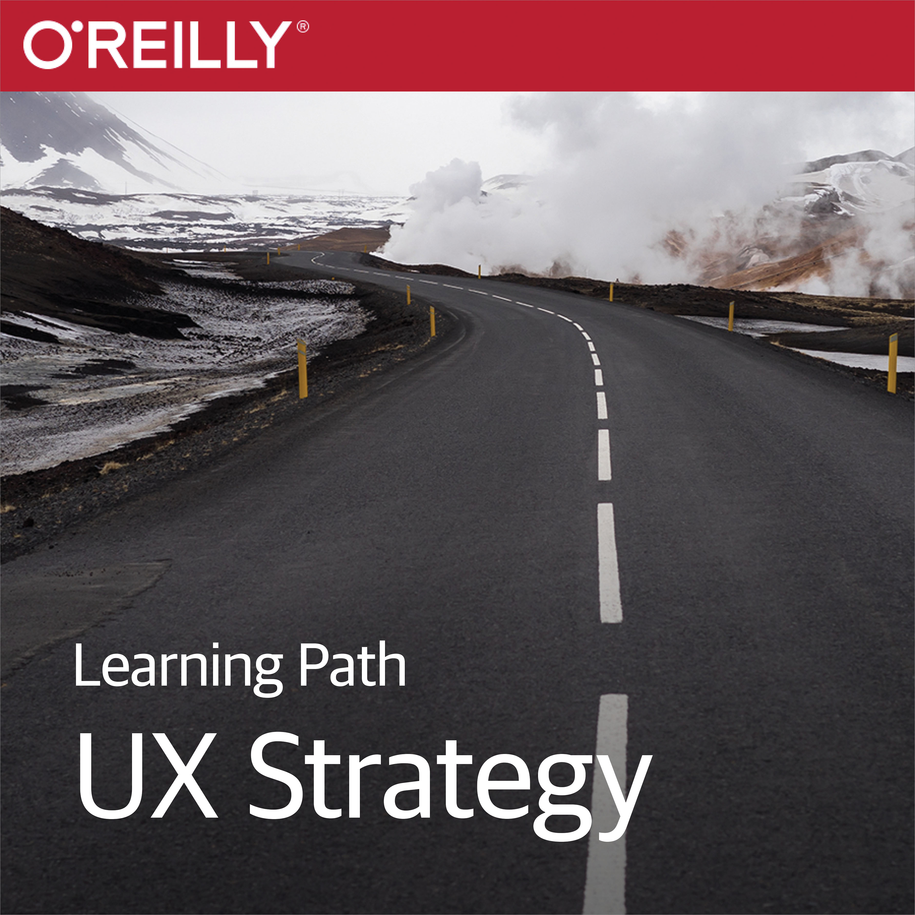 cover for Learning Path: UX Strategy