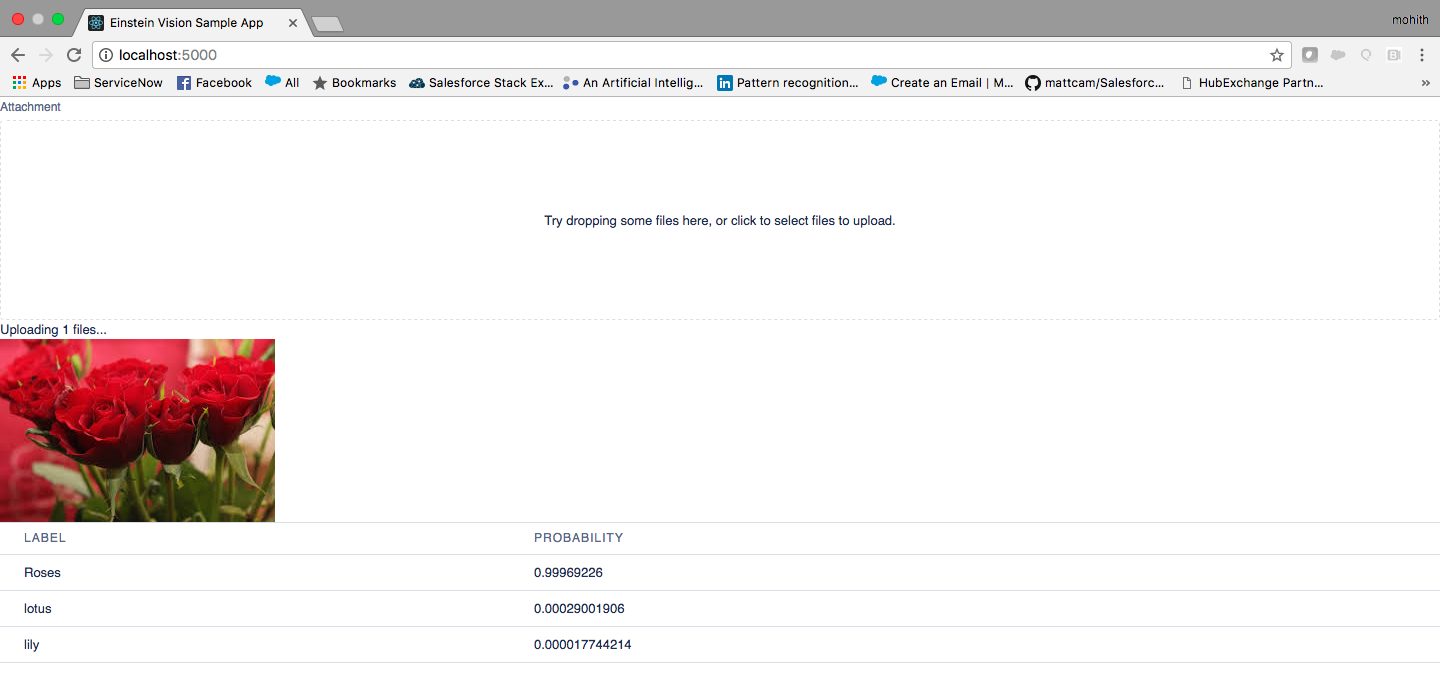 Testing the application on localhost - Learning Salesforce Einstein
