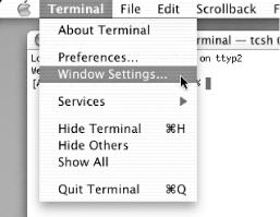 Changing the appearance of your Terminal window