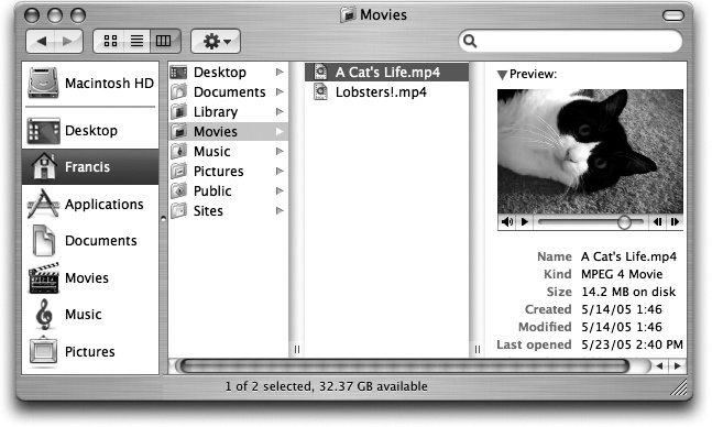 If the rightmost folder contains pictures, sounds, or movies, Mac OS X even lets you look at them or play them, right there in the Finder. If it's a certain kind of text document (AppleWorks or PDF, for example), you actually see a tiny image of the first page. If it's any other kind of document, you see a blowup of its icon and a few file statistics. You can drag this jumbo icon anywhere—into another folder, for example.