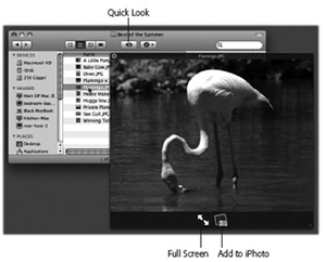 Once the Quick Look window is open, you can play the file (movies and sounds), study it in more detail (most kinds of graphics files), or even read it (PDF, Word, and Excel documents).You can also click another icon, and another, and another, without ever closing the preview; the contents of the window simply change to reflect whatever you've just clicked.Supertip: Quick Look even works on icons in the Trash, too, so you can figure out what something is before you nuke it forever.
