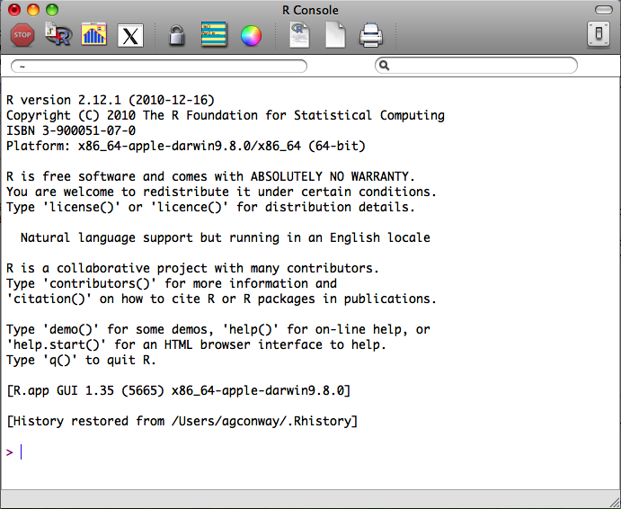The R Console on a 64-bit version of the Mac OS X installation