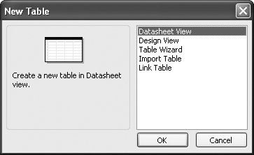 The New Table dialog box.