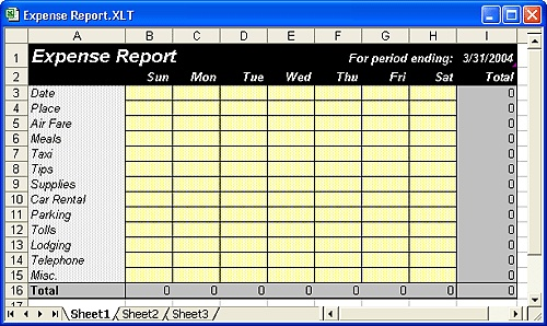 This template file serves as the basis for creating new expense reports.