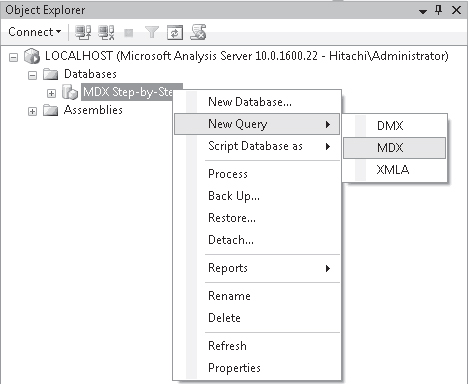The MDX Query Editor