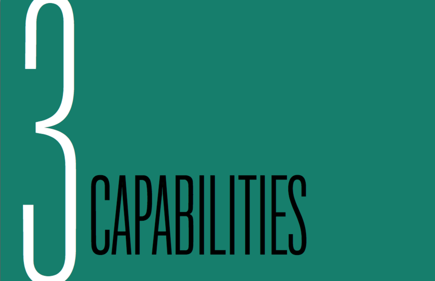 Chapter 3: Capabilities
