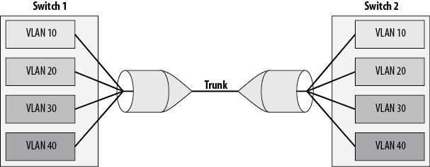 Visual representation of a trunk