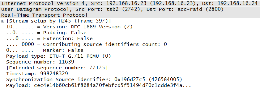 Actual RTP packet for comparison