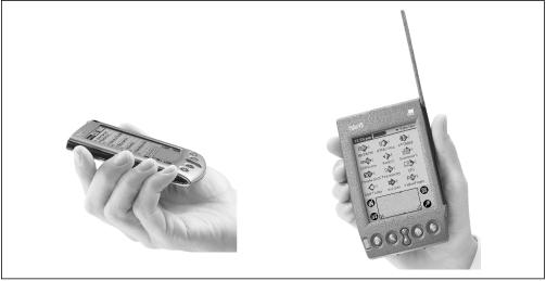 The Palm V, left, is the smallest Palm device yet. The Palm VII, right, is slightly taller than a standard PalmPilot, thanks to its built-in two-way radio circuitry.