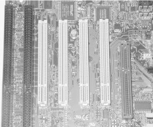 "An Intel SE440BX ""Seattle"" motherboard showing, from left to right, one ISA slot, one combined ISA/PCI slot (which can accept an ISA or a PCI card, but not both simultaneously), three PCI slots, and an AGP slot"