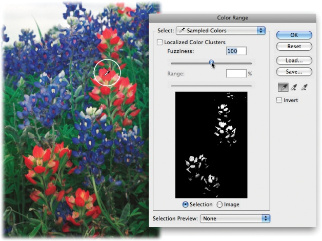 The Color Range command is handy when you need to select an area with a lot of details, like the red and blue petals of these flowers. The image in the dialog box's preview area shows the part that Photoshop will select when you click the OK button.