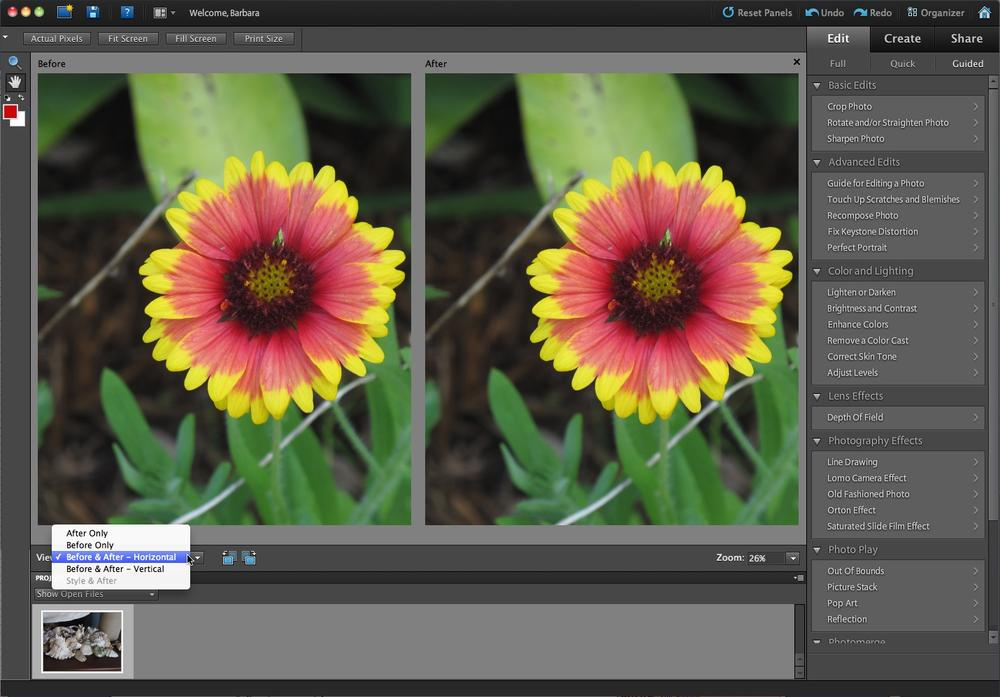 Guided Edit gives you step-by-step help with basic photo editing. Just use the tools that appear in the right-hand panel once you choose an activity, like the ones shown here. As with the Quick Fix, you can change the view to Before & After; simply use the pop-out menu (where the cursor is here) to select the view you want.