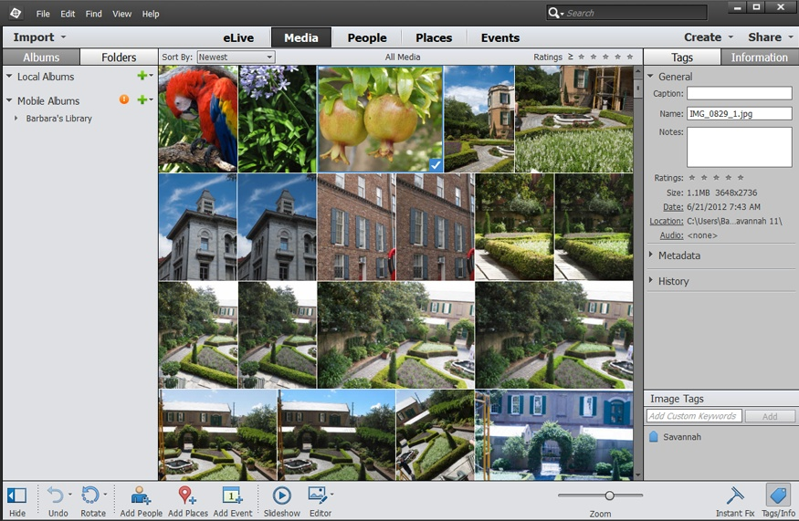 what can photoshop elements do