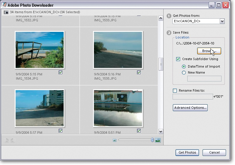 The Adobe Photo Downloader is yet another program that you get when you install the Windows version of Elements. Its role in life is to pull your photos from your camera (or other storage device) into the Organizer. The Downloader runs even if Elements isn't currently open (although, as you'll learn in Chapter 2, you can disable the Downloader if you don't like it). After the Downloader does its thing, you end up in the Organizer.