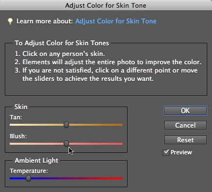 When this dialog box appears, your cursor turns into a little eyedropper when you move it over your photo. Just click the best-looking area of skin you can find. You won't see any sliders in the tracks until you click. After Elements adjusts the photo based on your click, the sliders appear and you can use them to fine-tune the results. Clicking different spots gives different results, so you may want to experiment by clicking various places.