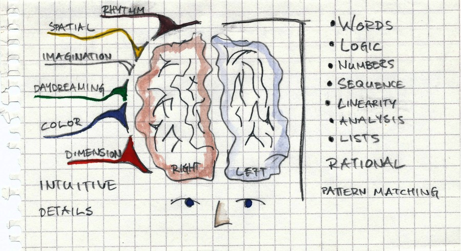 left and right brain methods Human brain is divided into two parts as right brain and left brain according to its behavior and thinking style according to the researches, we use only a small fraction of our brain therefore, our brains are always available for development.