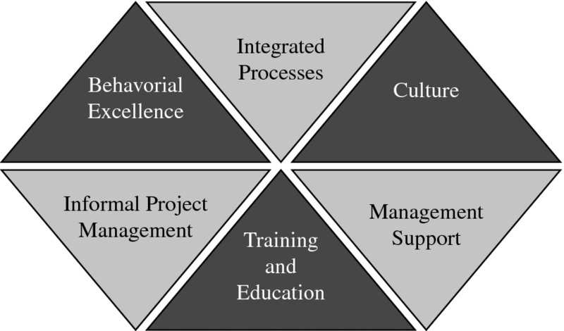 Diagram shows hexagon formed by six triangles with labels for integrated processes, culture, management support, training and education, informal project management, and behavioral excellence.