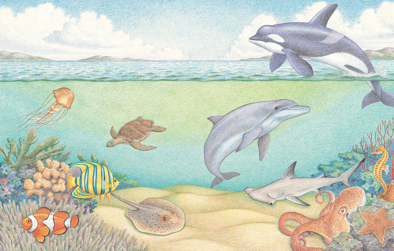 Underwater World Drawing by Ivanna Pogonets  Underwater World Drawings