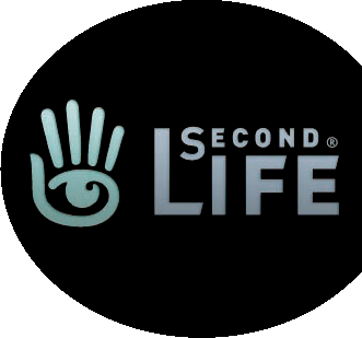 The Meaning of (Second) Life