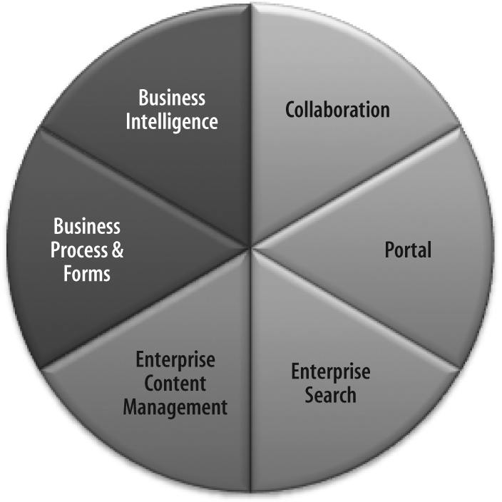 Six functional areas of Microsoft Office SharePoint Server 2007